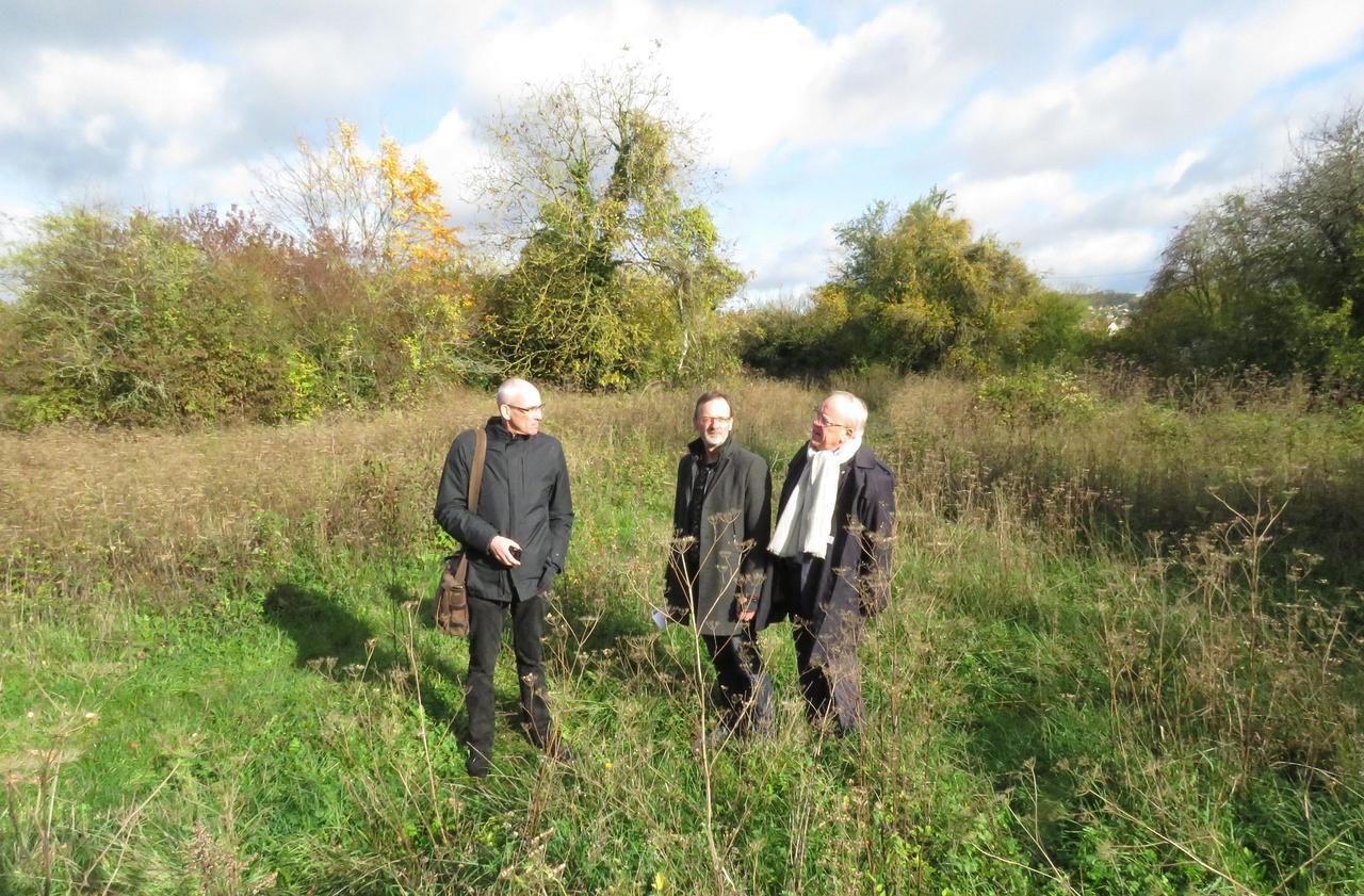Argenteuil - Gennevilliers : ces terrains en friches vont devenir des terres maraîchères - Le Parisien