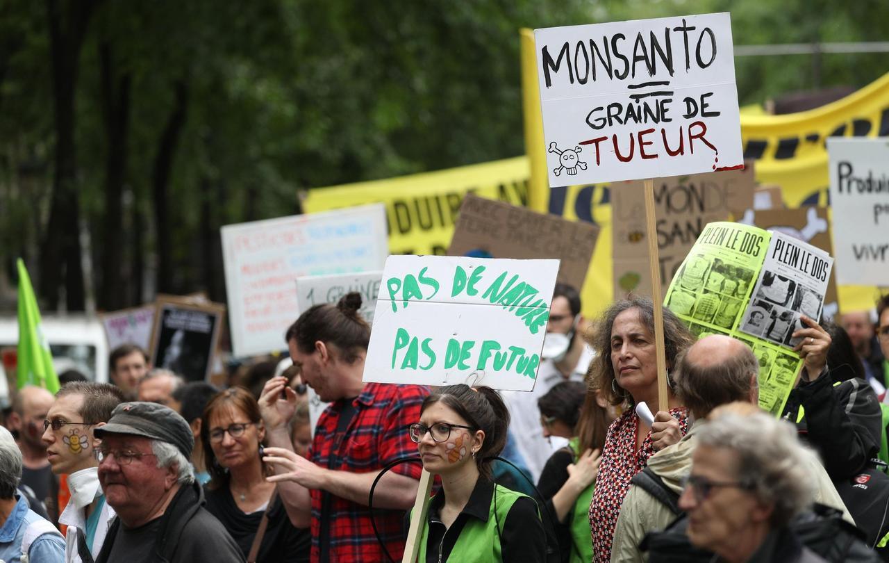 Courbevoie : l'arrêté anti-glyphosate annulé, la ville persiste - Le Parisien