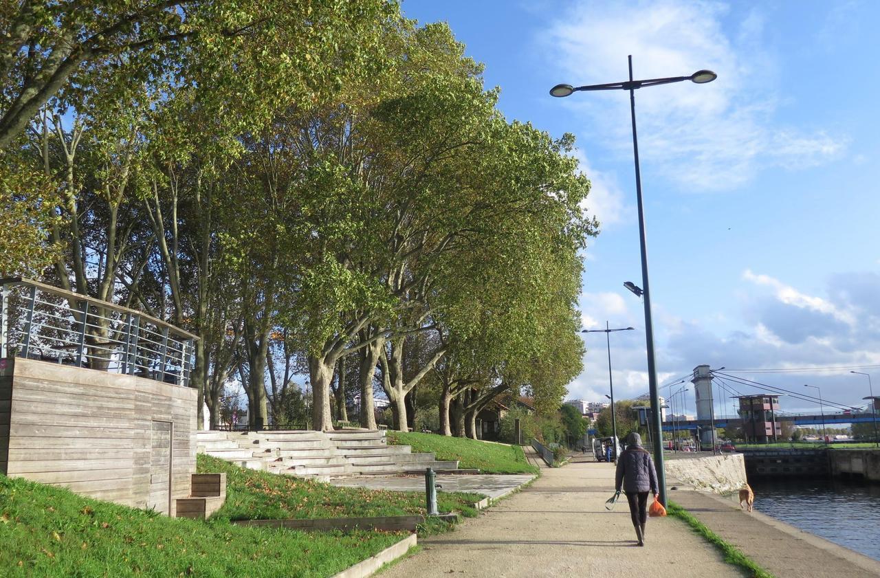 Municipales à Alfortville : «Ville verte, c'est vite dit», selon les habitants - Le Parisien