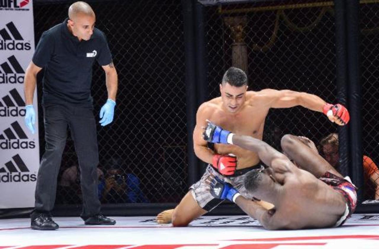 Le ministère des Sports choisit la fédération française de boxe pour encadrer le MMA
