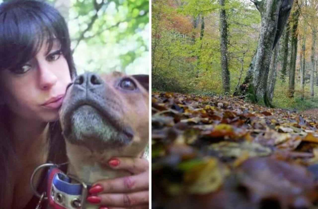 Femme enceinte retrouvée morte dans l'Aisne : sur la piste des chiens meurtriers