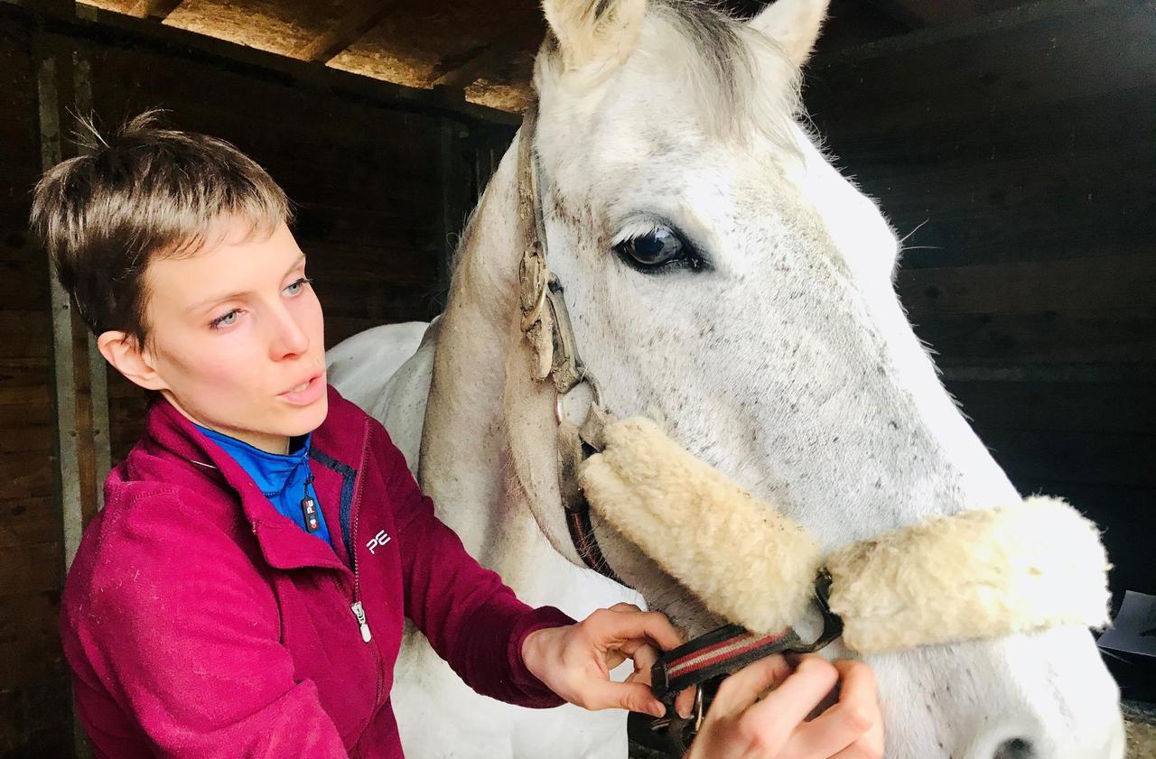 Dans l'Eure, Clarisse Prieur prépare son diplôme de Bodywork équin