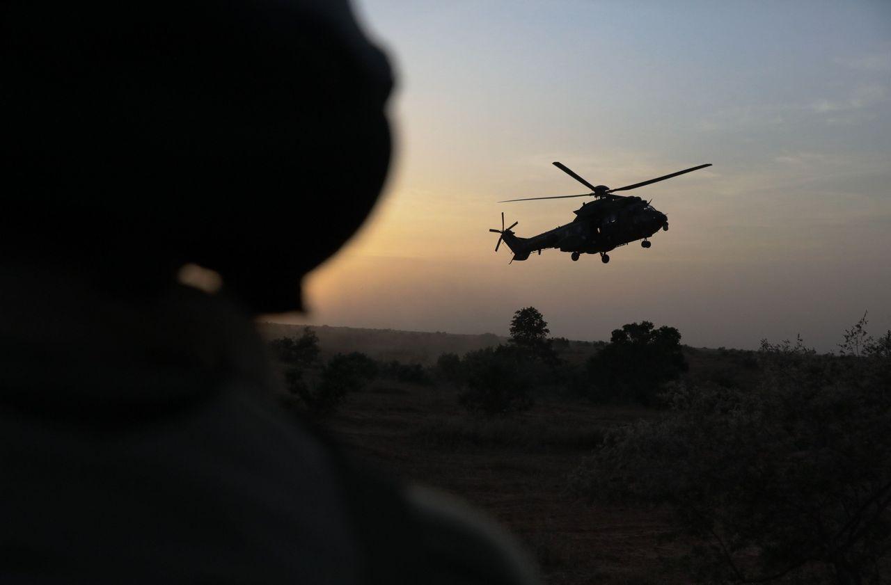 Force Barkhane au Mali : une quarantaine de djihadistes mis «hors de combat» en deux semaines