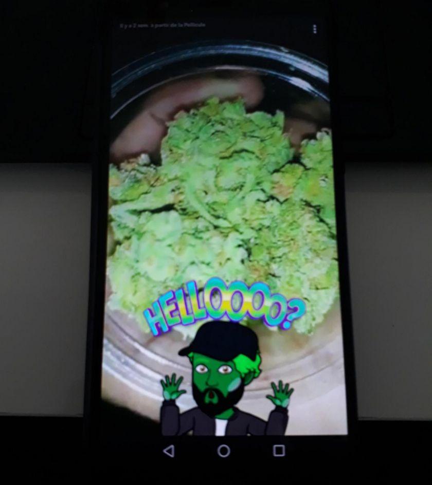 Ile-de-France : la drogue commandée sur Snapchat était livrée à