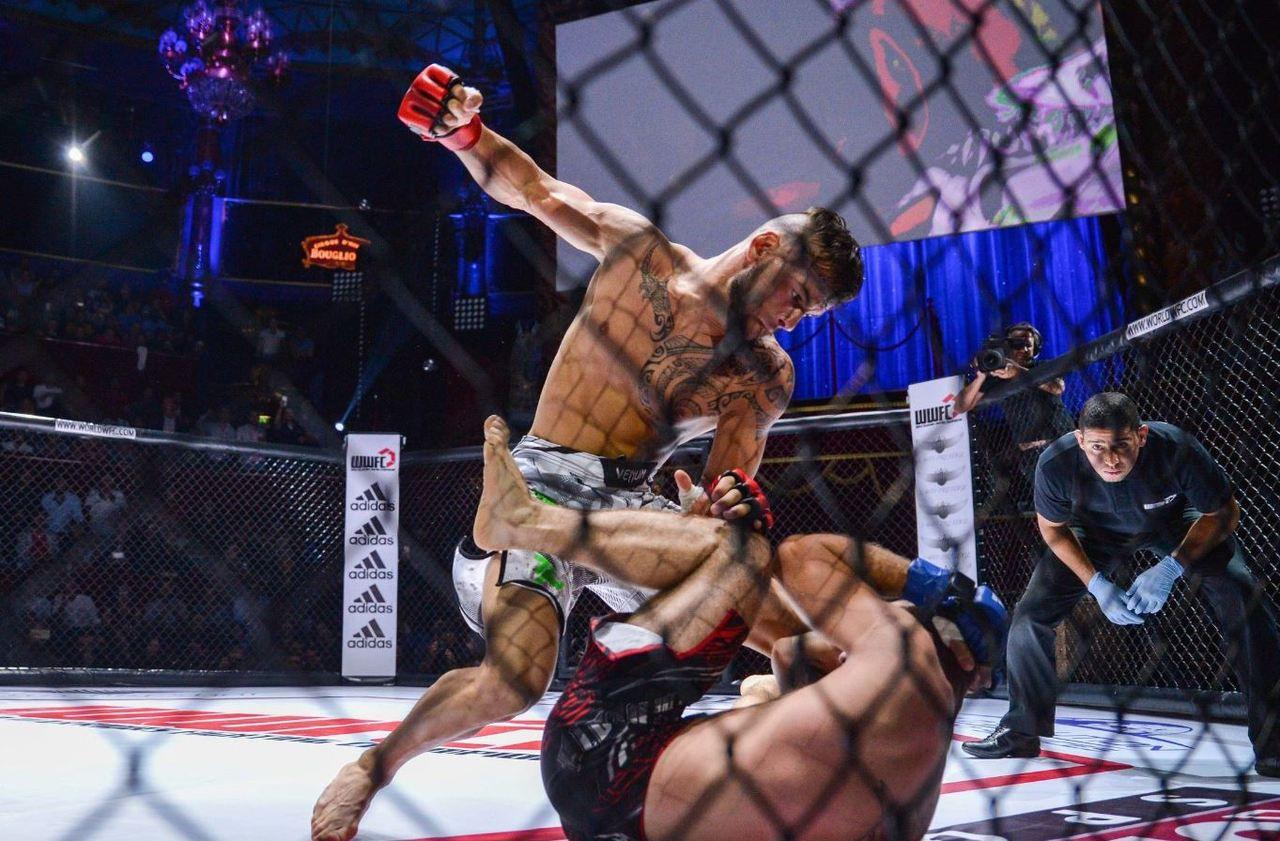 MMA : le ministère repousse l'arrivée du sport de combat en France