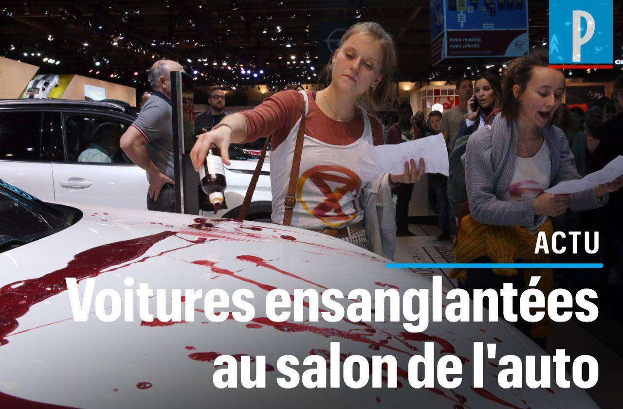 VIDÉO. Extinction Rebellion perturbe le salon de l'automobile à Bruxelles