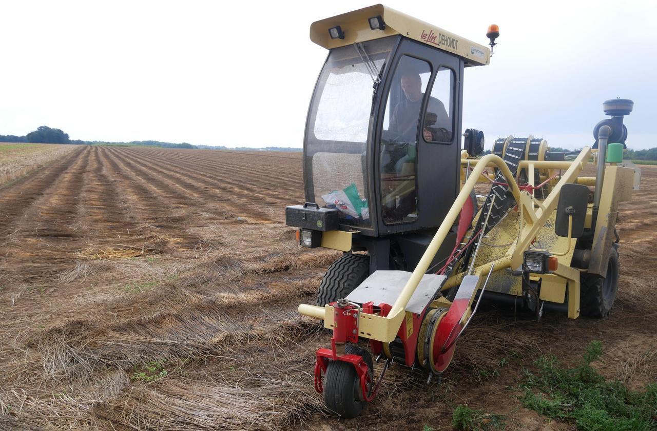 Agriculture : recherche désespérément tractoristes, vachers, ouvriers agricoles…
