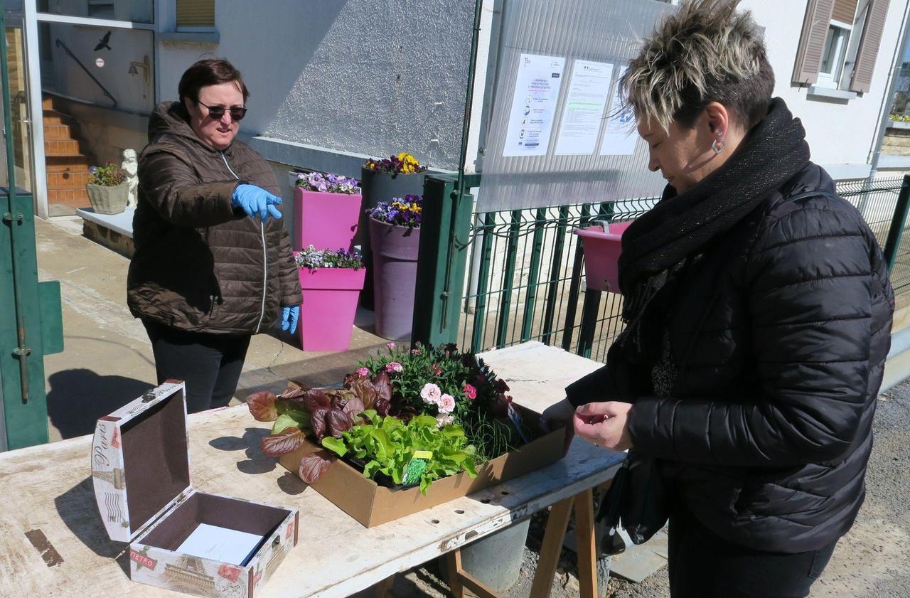 Horticulteur Val D Oise a rantigny, les accros au jardinage ont désormais leur drive