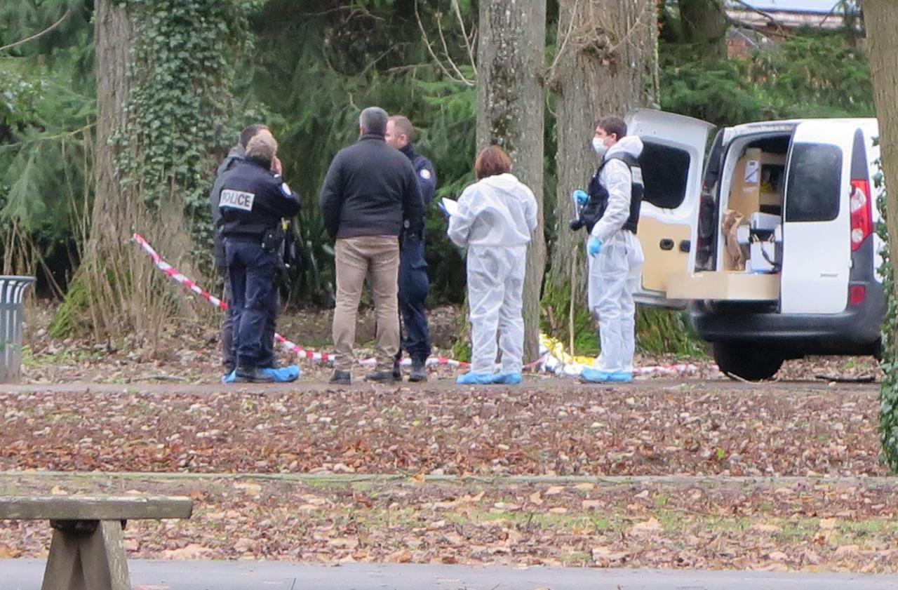 Seine-et-Marne: une femme retrouvée inconsciente et en partie dénudée dans un parc