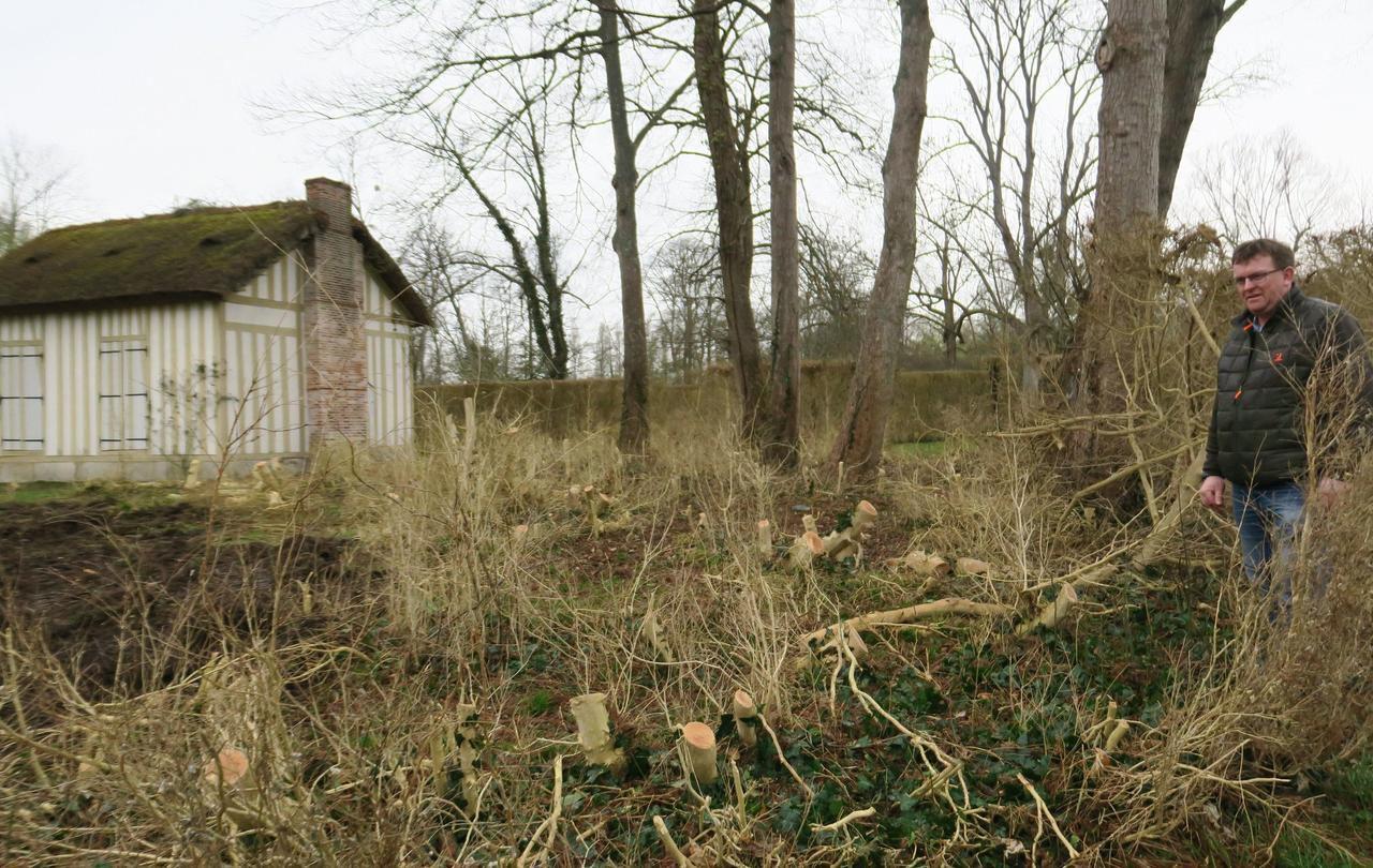 Oise : les jardins prestigieux en guerre contre les maladies