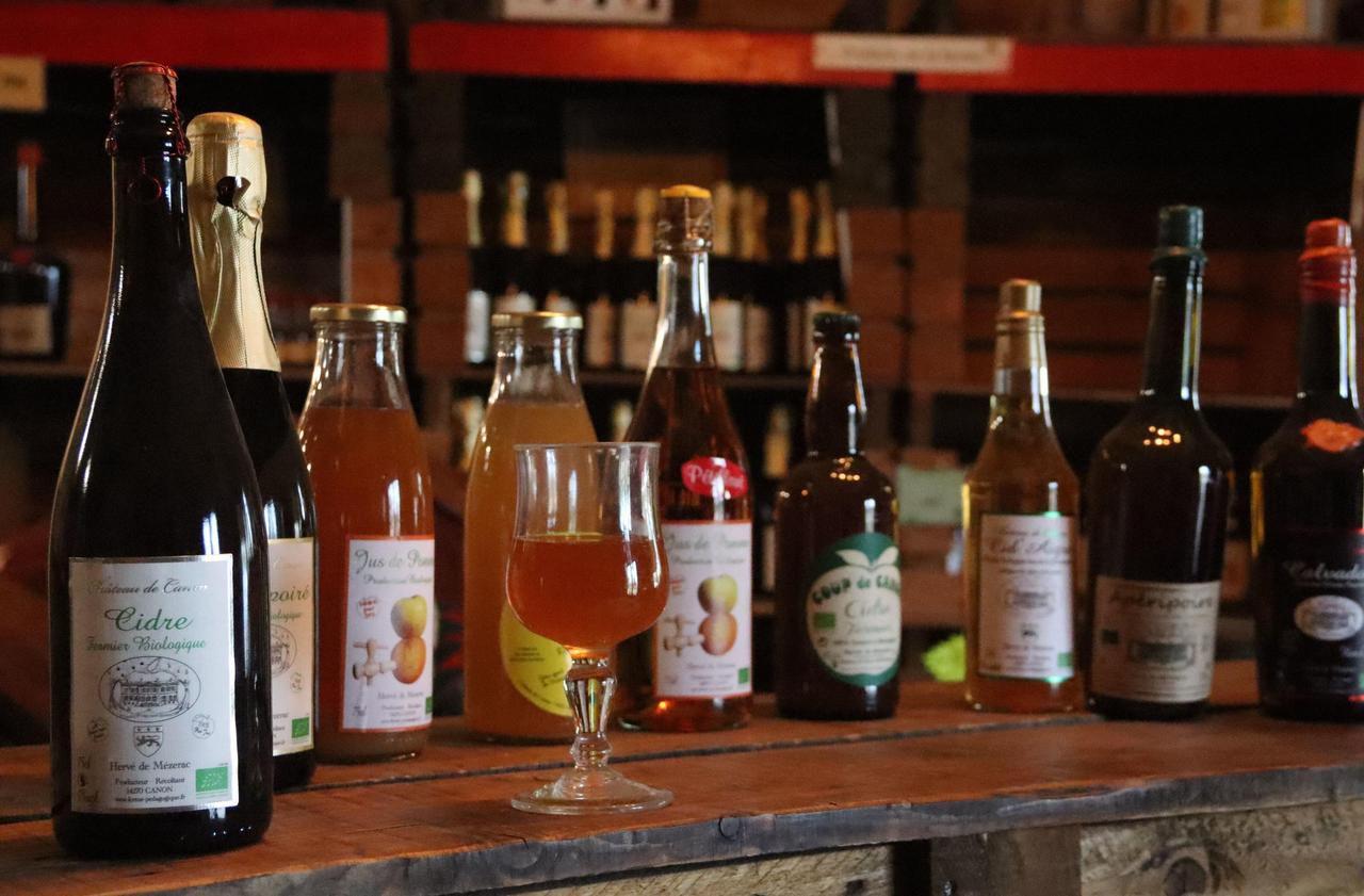 Les étés chauds font grimper le taux d'alcool du cidre normand