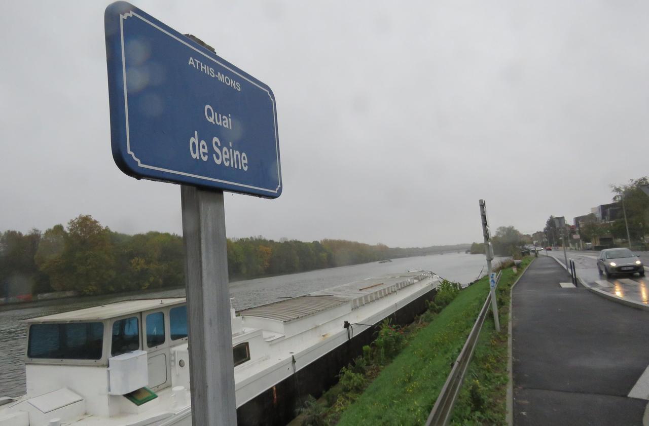 Municipales à Athis-Mons : les promesses de 2014 ont-elles été tenues ? - Le Parisien