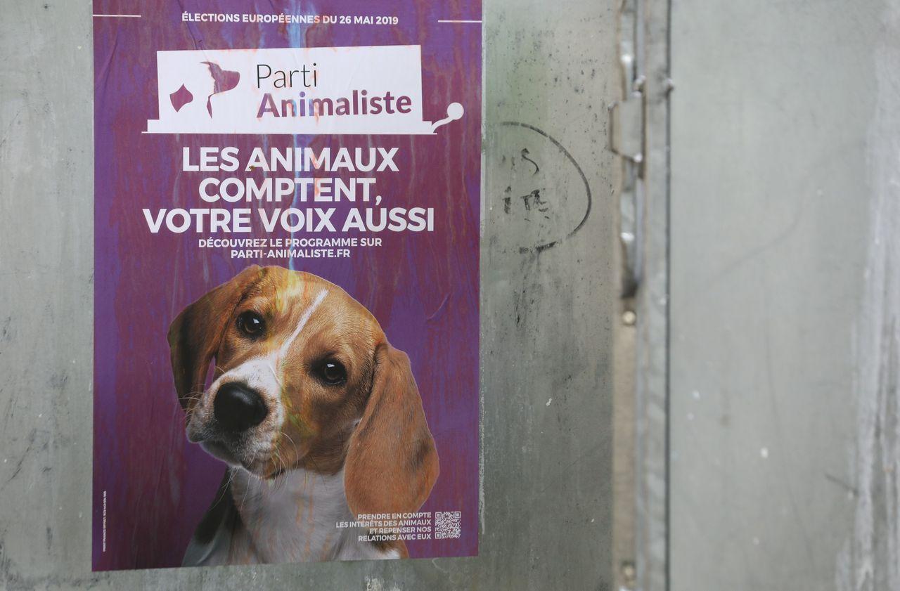Un député ne veut plus d'animaux sur les affiches électorales