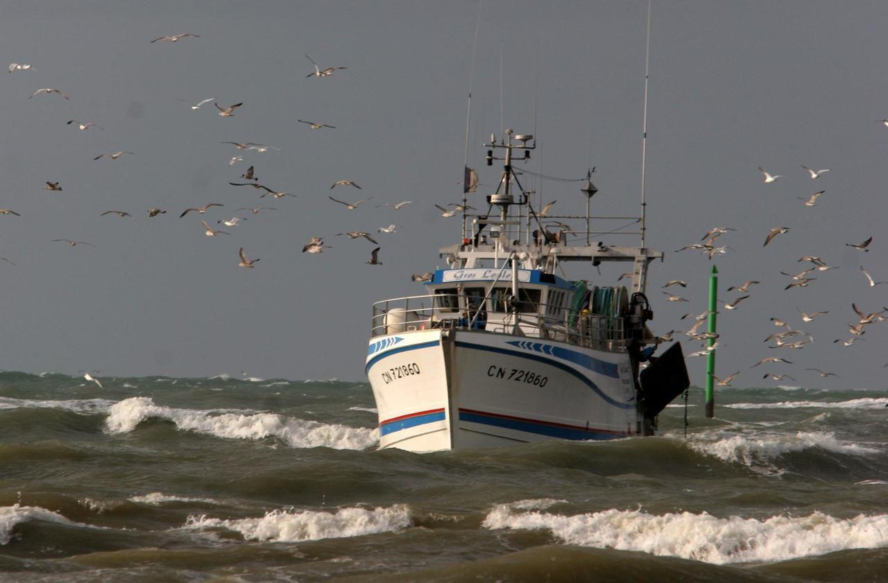 Les pêcheurs français et le Brexit : «70 % de nos prises sont réalisées dans les eaux britanniques»