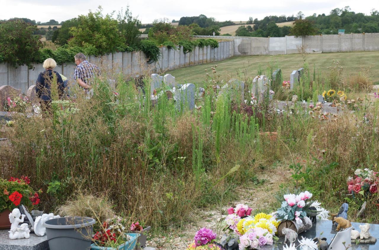 Magny-en-Vexin : l'entretien du cimetière fait débat - Le Parisien