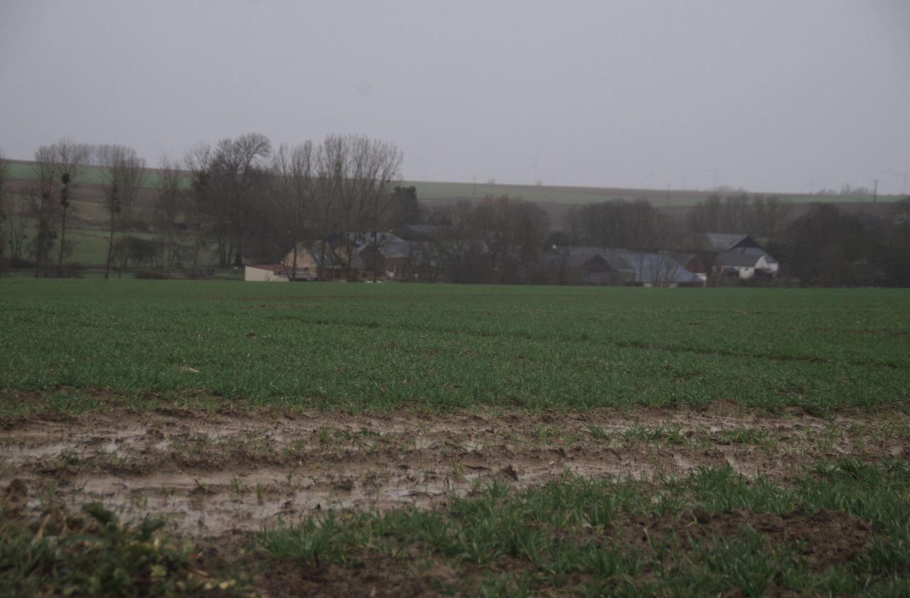 Dans le Noyonnais, les travaux anticrues inquiètent les agriculteurs