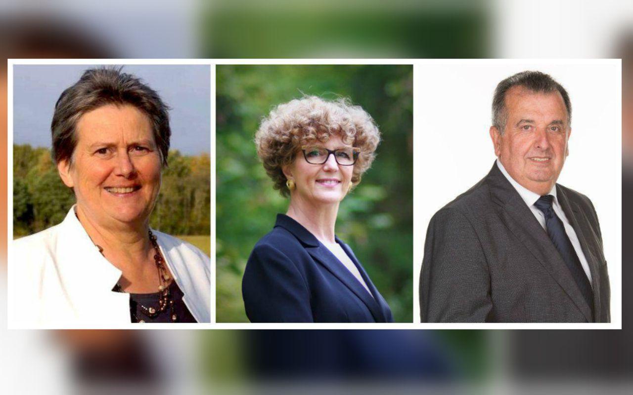 Municipales 2020 : à Santeny, trois candidats LR veulent succéder au maire - Le Parisien