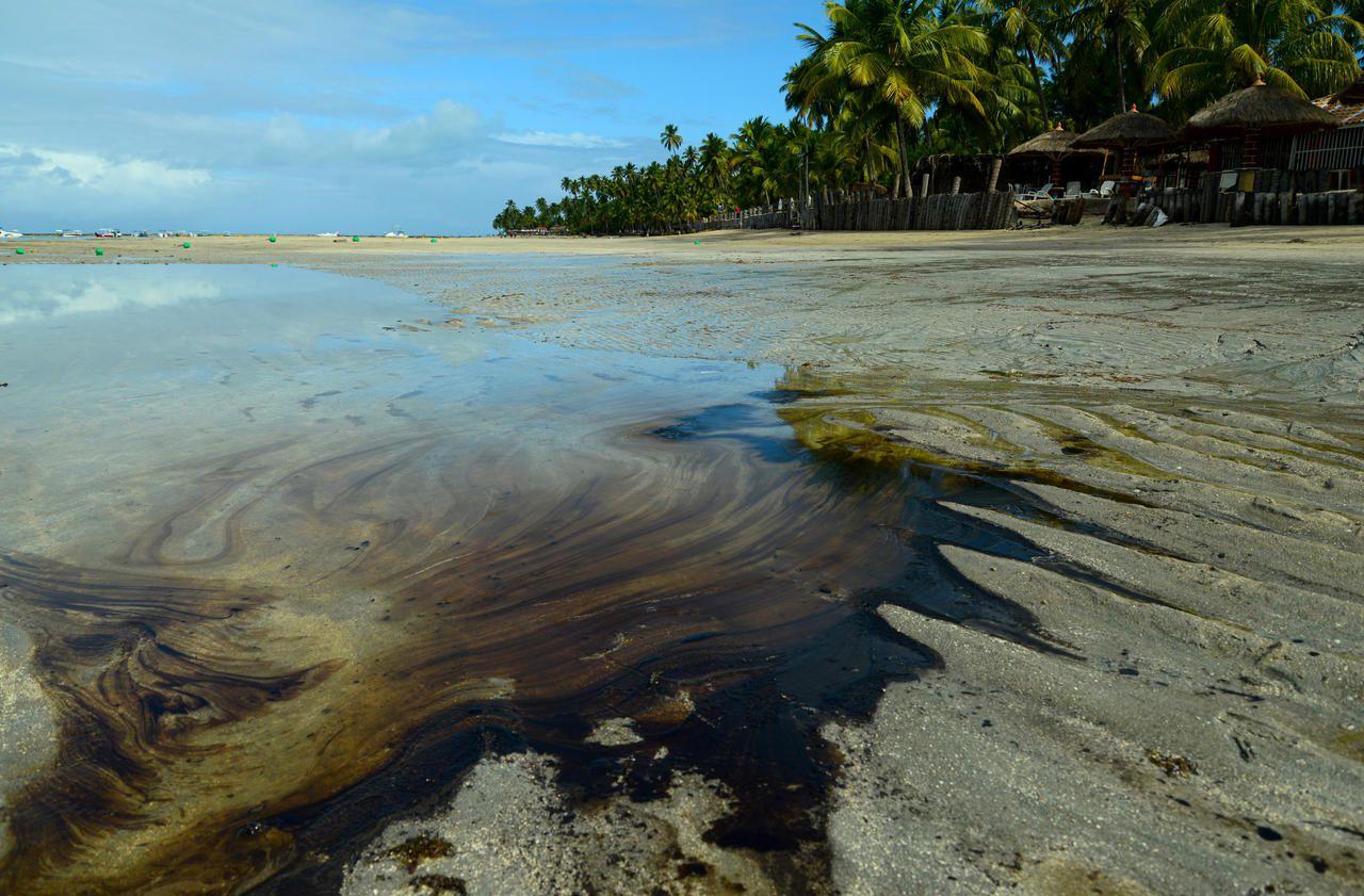 Plages souillées par le pétrole au Brésil : ce que l'on sait de ce «désastre» environnemental