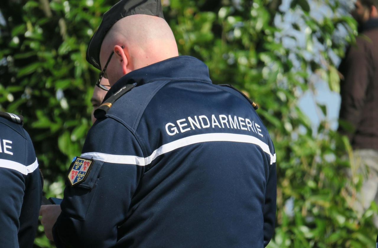 Val-d'Oise : les gendarmes créent une brigade contre les violences familiales